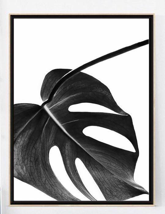 poster zwart blad