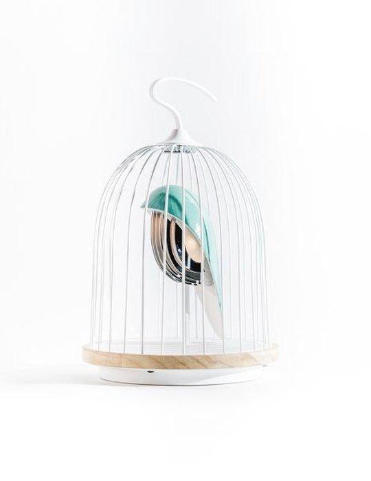 daqi-l'oiseau blue