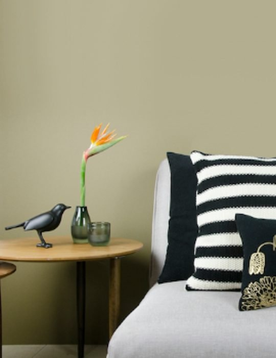 silverview-housebird