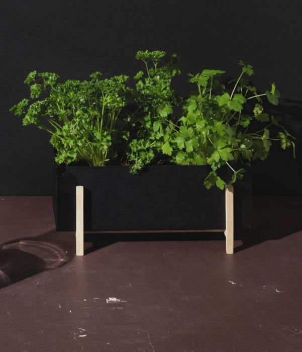 design house stockholm Botanic box